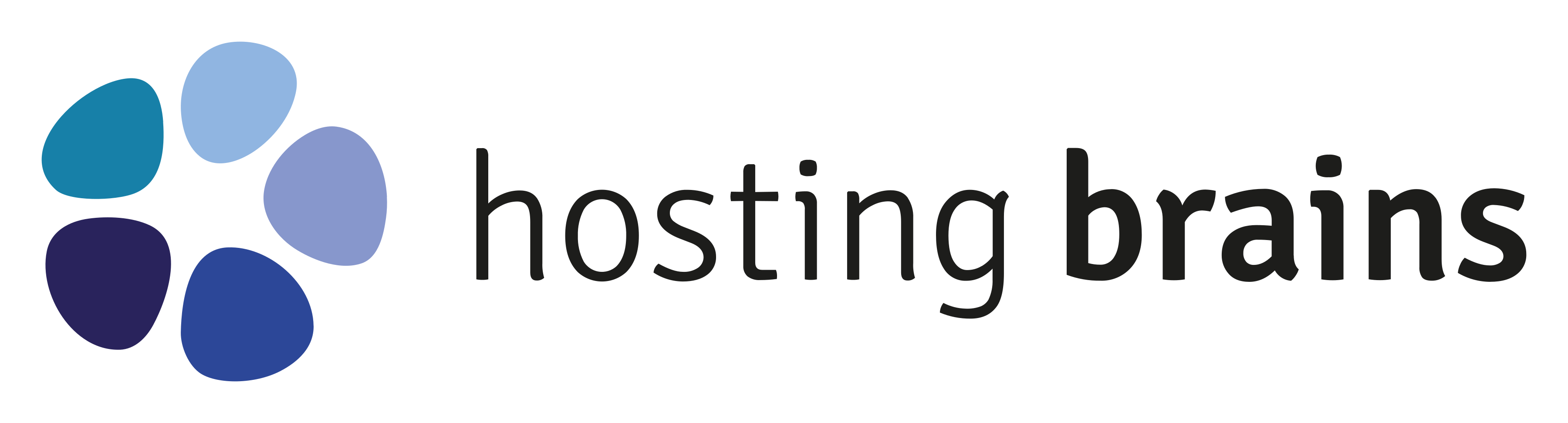 """Logo """"Hosting Brains"""" with graphic on the left side"""